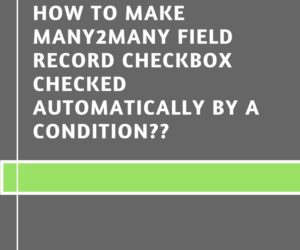 How to Make many2many Field Record Checkbox Checked Automatically by a Condition??