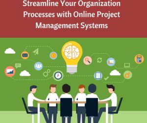 Streamline Your Organization Processes with Online Project Management Systems