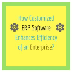 How Customized ERP Software Enhances Efficiency of an Enterprise?