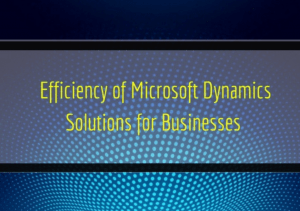 Read more about the article Efficiency of Microsoft Dynamics Solutions for Businesses