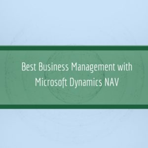 Read more about the article Best Business Management with Microsoft Dynamics NAV