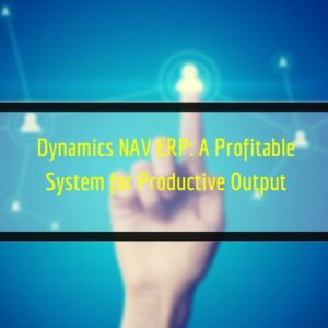 Read more about the article Dynamics NAV ERP: A Profitable System for Productive Output
