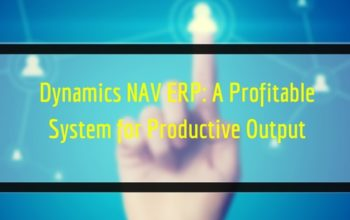 Dynamics NAV ERP: A Profitable System for Productive Output