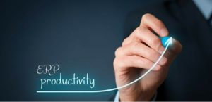 Prodictivity on ERP software solution